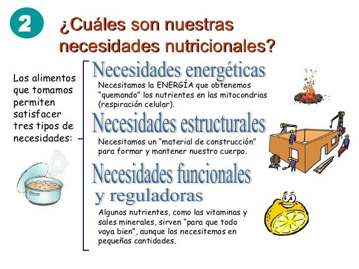 requerimientos nutricionales de los cultivos pdf