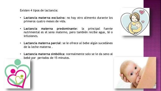 Alimentacion al seno materno - Alimentos para producir leche materna ...
