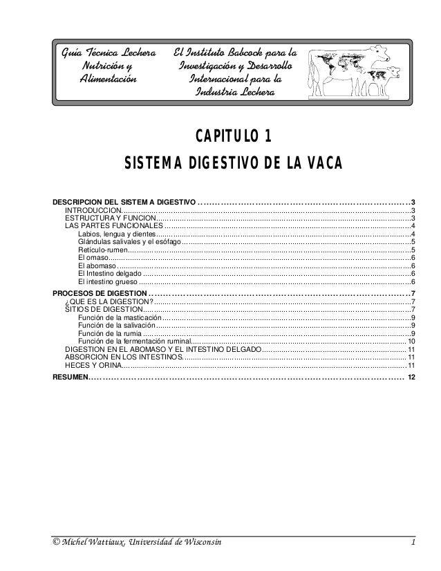 Guía Técnica Lechera                                                   El Instituto Babcock para la         Nutrición y   ...