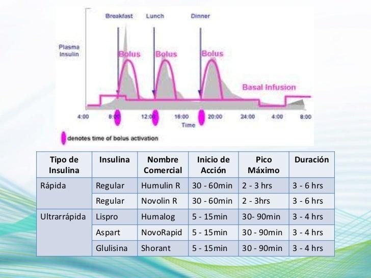 La Alimentacion y el Conteo de Hidratos de Carbono