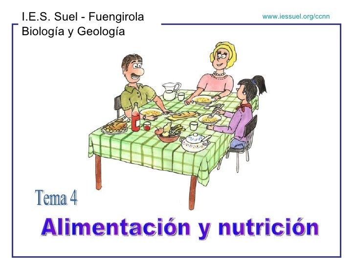 Alimentación y nutrición Tema 4 I.E.S. Suel - Fuengirola Biología y Geología www.iessuel.org/ccnn