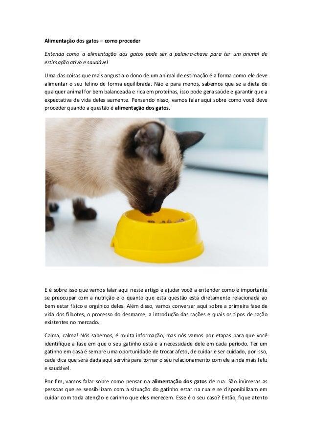 Alimentação dos gatos – como proceder Entenda como a alimentação dos gatos pode ser a palavra-chave para ter um animal de ...