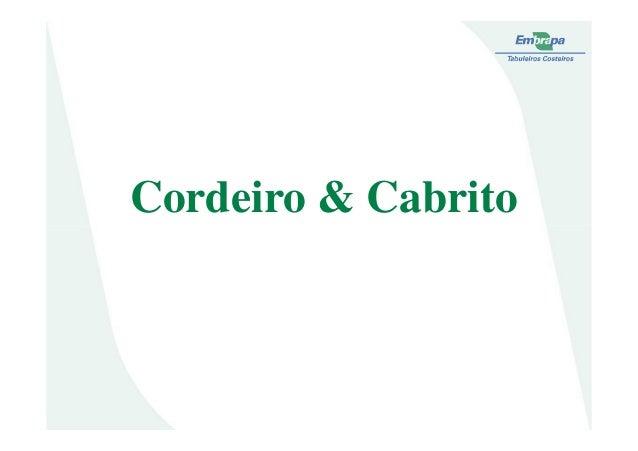 Cordeiro & Cabrito