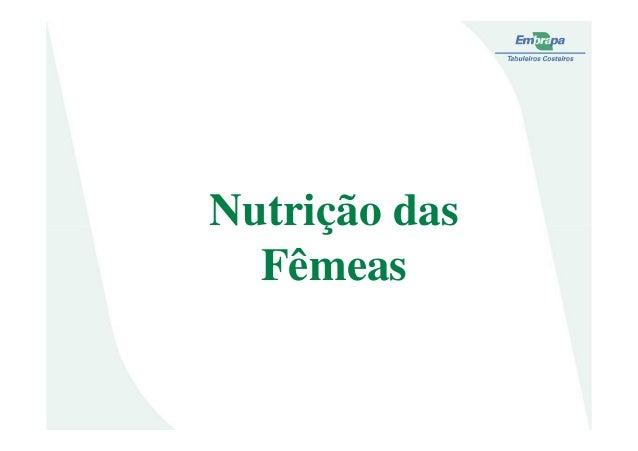 Nutrição dasNutrição dasFêmeas