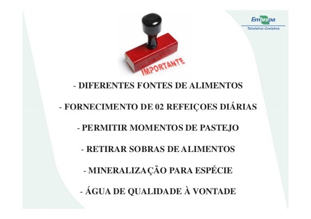 - DIFERENTES FONTES DE ALIMENTOS- FORNECIMENTO DE 02 REFEIÇOES DIÁRIAS- FORNECIMENTO DE 02 REFEIÇOES DIÁRIAS- PERMITIR MOM...