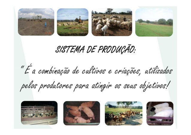 """SISTEMA DE PRODUÇÃO:SISTEMA DE PRODUÇÃO:SISTEMA DE PRODUÇÃO:SISTEMA DE PRODUÇÃO:"""" É a combinação de cultivos e criações, u..."""