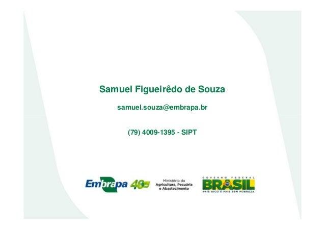 Samuel Figueirêdo de Souzasamuel.souza@embrapa.br(79) 4009-1395 - SIPT