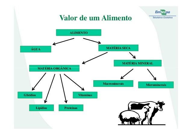Valor de um AlimentoALIMENTOÁGUA MATÉRIA SECAMATÉRIA ORGÂNICAMATÉRIA MINERALMATÉRIA ORGÂNICAMicromineraisMacromineraisGlic...
