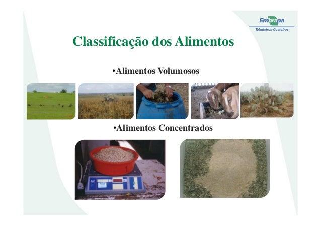 Classificação dos Alimentos•Alimentos Volumosos•Alimentos Concentrados