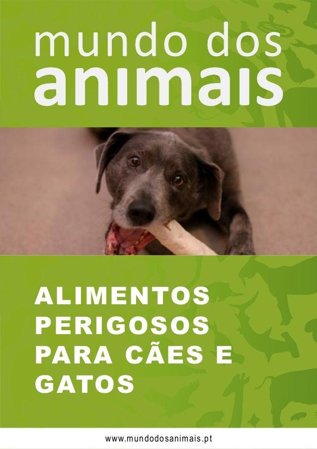 ALIMENTOS PERIGOSOS PARA CÃES E GATOS www.mundodosanimais.pt