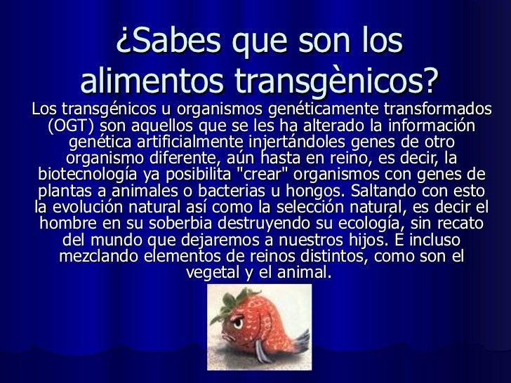 ¿Sabes que son los alimentos transgènicos? Los transgénicos u organismos genéticamente transformados (OGT) son aquellos qu...