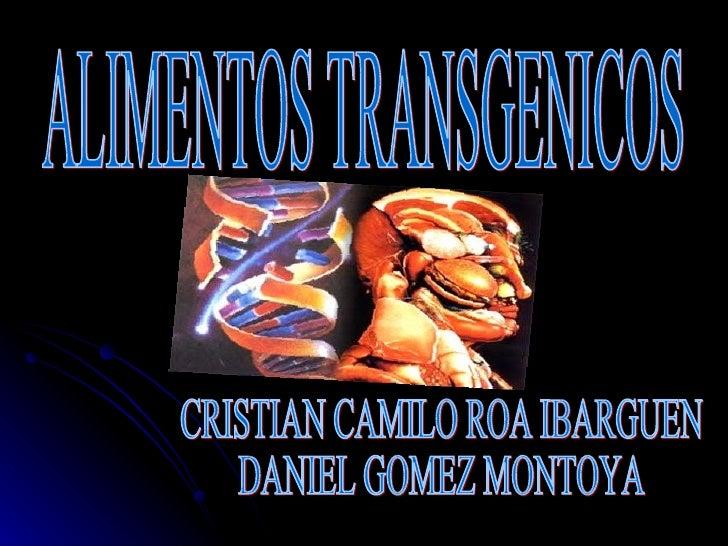 CRISTIAN CAMILO ROA IBARGUEN  DANIEL GOMEZ MONTOYA ALIMENTOS TRANSGENICOS
