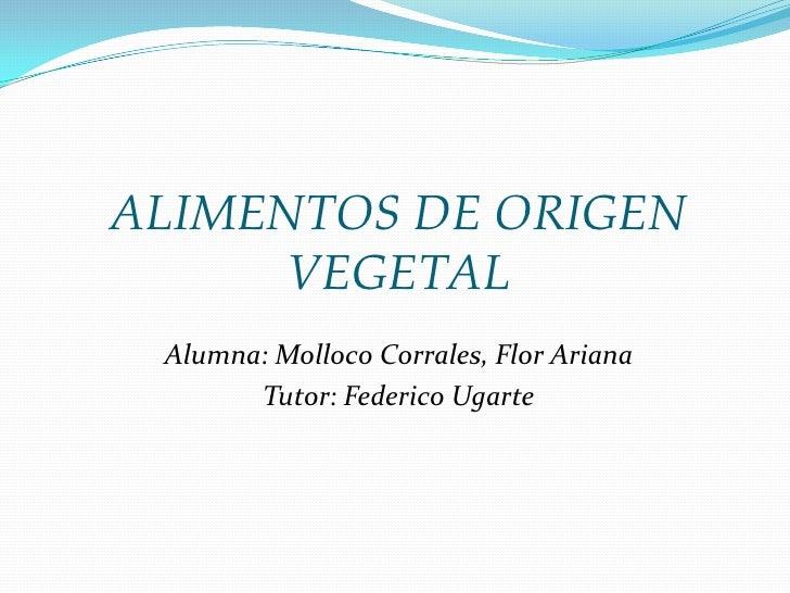 ALIMENTOS DE ORIGEN VEGETAL<br />Alumna: Molloco Corrales, Flor Ariana<br />Tutor: Federico Ugarte<br />