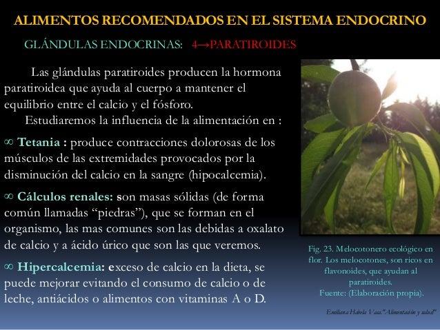 vegetales contra la gota dedos.hinchados acido urico thrombocidad imagenes de acido urico en la mano