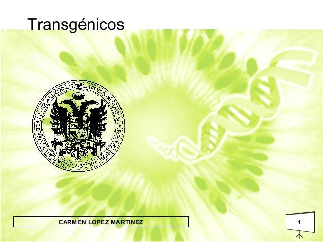 1CARMEN LOPEZ MARTINEZ Transgénicos