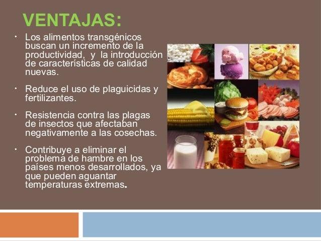 Alimentos transgenicos - Ventajas alimentos transgenicos ...