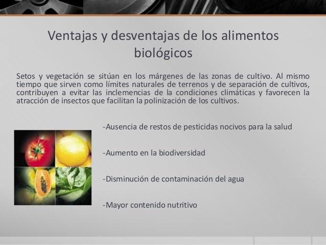 Alimentos transgenicos y biologicos - Ventajas alimentos transgenicos ...