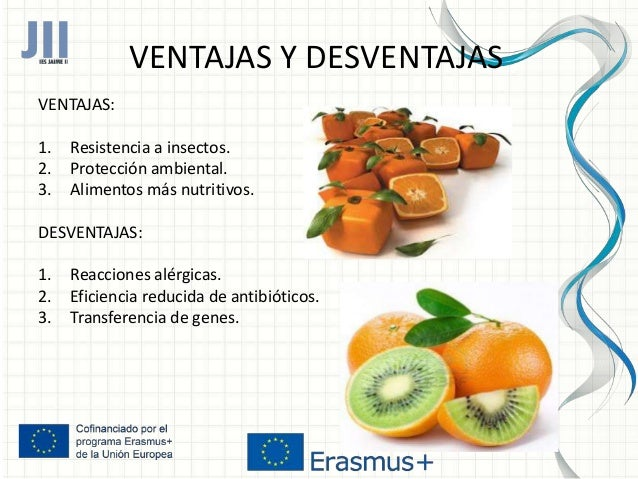 Alimentos transg nicos alicia aznar - Ventajas alimentos transgenicos ...