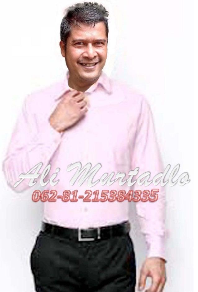 Ali Murtadlo Pt Bank Bumi Arta 08