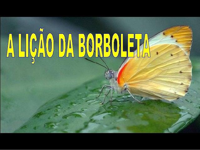 A borboleta se esforçava para fazer com que o seu corpo passasse através daquele pequeno buraco