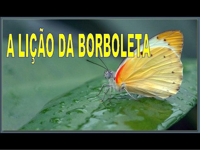 A borboleta se esforçava para fazer com que o seu corpo passasse através daquele pequeno buraco A borboleta se esforçava p...