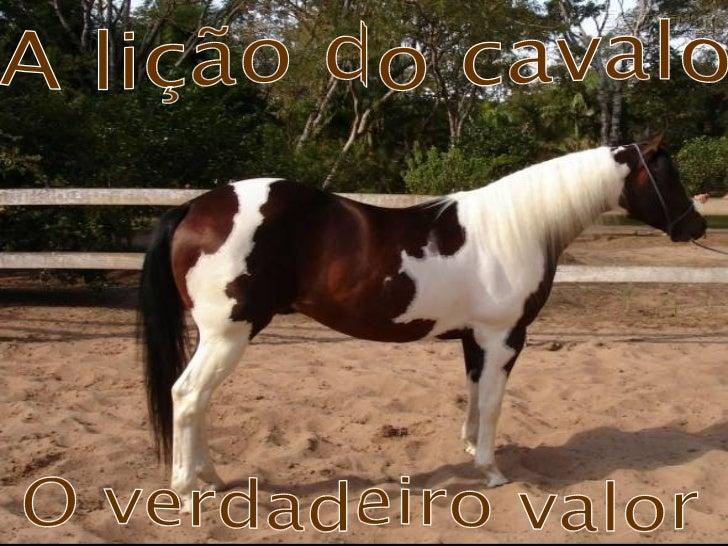 A lição do cavalo O verdadeiro valor