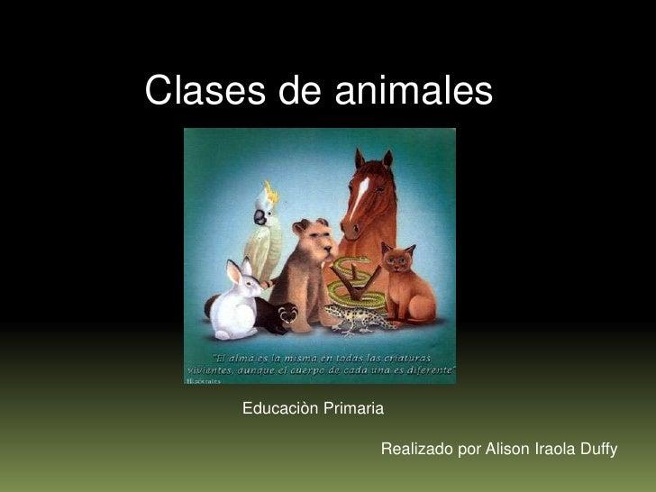 Clases de animales          Educaciòn Primaria                        Realizado por Alison Iraola Duffy