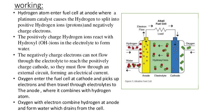 Flow Of Electrons In The External Circuit The Electrical Circuit Or