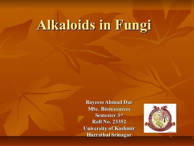Alkaloids in Fungi        Rayeess Ahmad Dar         MSc. Bioresources           Semester 3rd          Roll No. 23352      ...