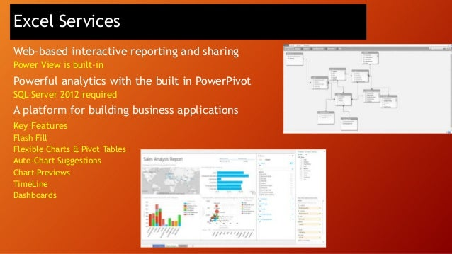 SQL Server Analysis Services for advanced analytics  SharePoint Excel Services  SQL Server Analysis Services