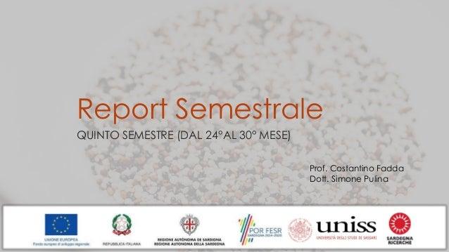 Report Semestrale QUINTO SEMESTRE (DAL 24°AL 30° MESE) Prof. Costantino Fadda Dott. Simone Pulina