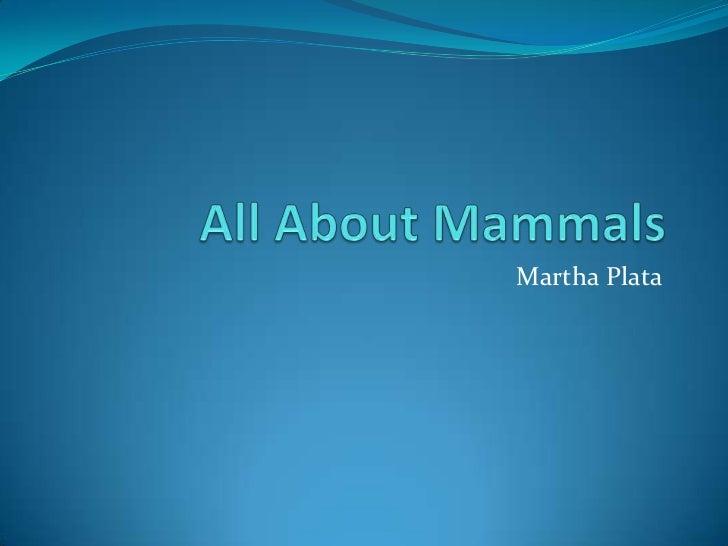 Martha Plata