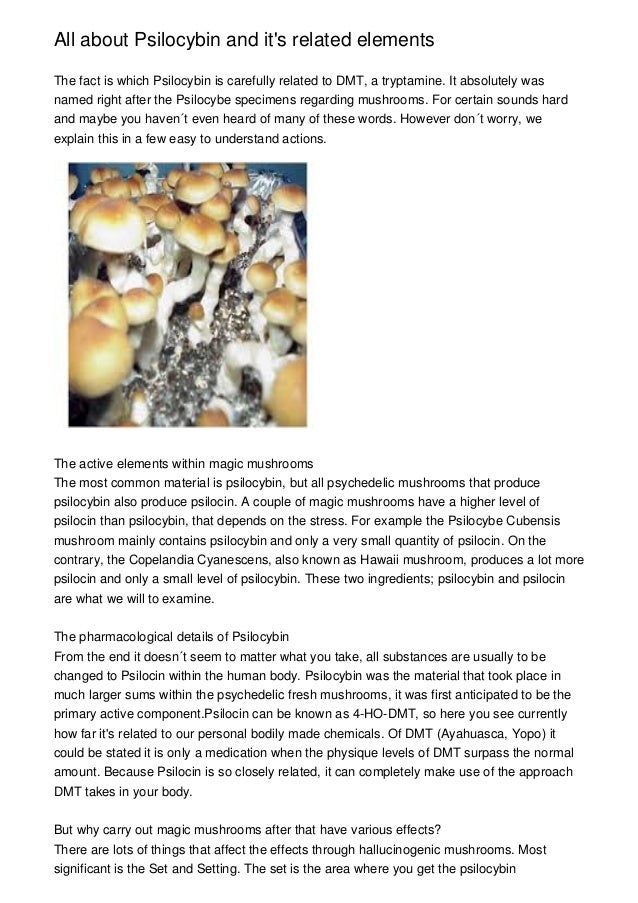 All about Psilocybin and it's related elements