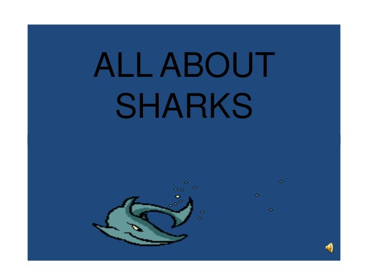 ALL ABOUT SHARKS<br />