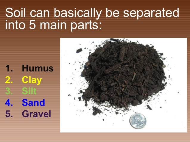 All about soil 4 7 a for Four main components of soil