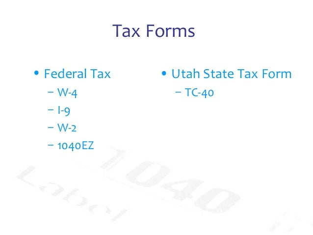 All about taxes, forms and deductions -- Wayne Lippman CPA