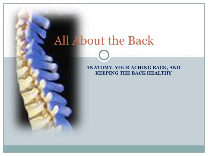 ANATOMY, YOUR ACHING BACK, AND KEEPING THE BACK HEALTHY All About the Back