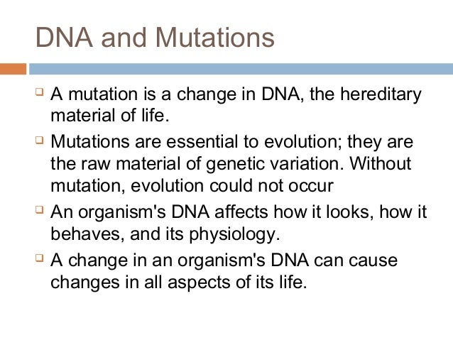 All about the DNA – Chapter 11 Dna and Genes Worksheet Answers
