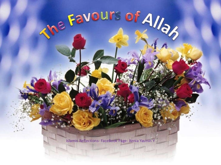 TheFavours of Allah<br />Islamic Reflections- FaceBook Page- Xenia Yasmin Y<br />