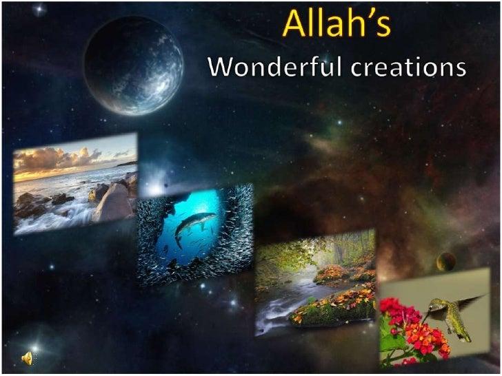 Allah'sWonderful creations<br />