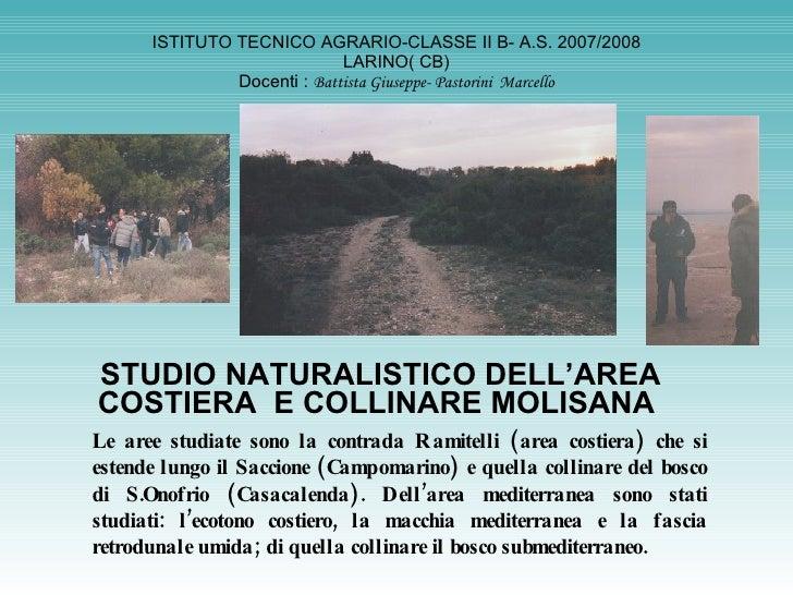 ISTITUTO TECNICO AGRARIO-CLASSE II B- A.S. 2007/2008 LARINO( CB) Docenti :  Battista Giuseppe- Pastorini  Marcello STUDIO ...