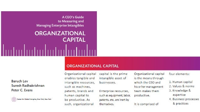 human capital and performance a literature Human resource management that affects organizational performance  the  literature reveals that studies into the hrm performance have not determined a.