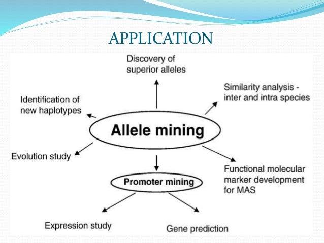 allele mining