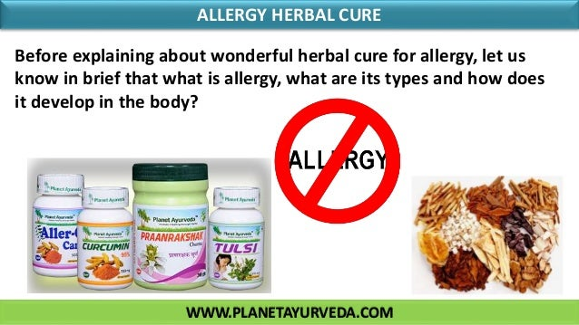 WWW.PLANETAYURVEDA.COM ALLERGY HERBAL CURE Before explaining about wonderful herbal cure for allergy, let us know in brief...