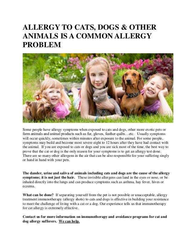 ALLERGY TO CATS, DOGS & OTHER ANIMALS IS A COMMON ALLERGY PROBLEM Some people have allergy symptoms when exposed to cats a...