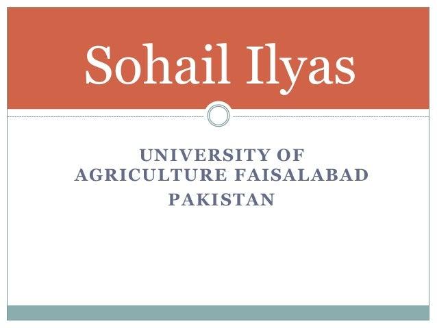 Sohail Ilyas UNIVERSITY OF AGRICULTURE FAISALABAD PAKISTAN