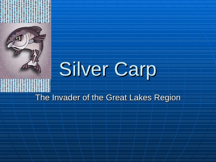 Silver Carp The Invader of the Great Lakes Region