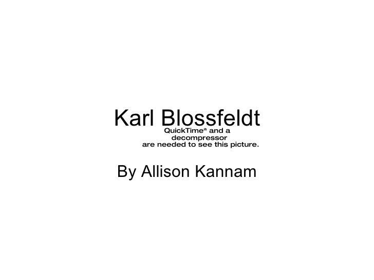 Karl Blossfeldt By Allison Kannam