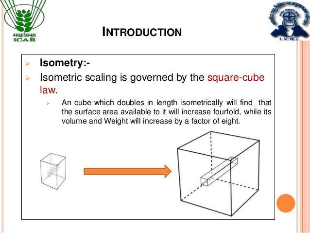 Allometry | biology | Britannica.com
