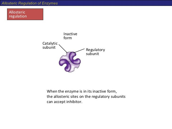 allosteric site active site 4